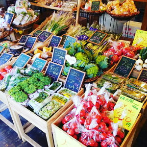 D-186【ふるさと納税】山口の新鮮野菜の詰め合わせ