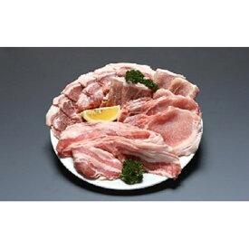 【ふるさと納税】パンを食べて育ったむつみ豚の焼肉セット600g(1万円コース) 【焼肉・バーベキュー・牛肉・ロース・お肉・豚肉・バラ】