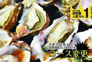 【ふるさと納税】馬島産 牡蠣(冬季限定)(D-4)