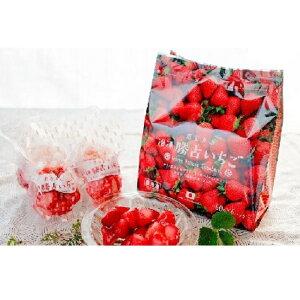 【ふるさと納税】A076a 冷凍勝占いちご60g×6個×3袋