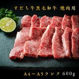 【ふるさと納税】】E-4すだち牛黒毛和牛(焼き肉用)600g