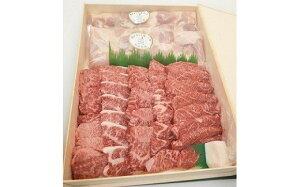 【ふるさと納税】阿波尾鶏モモ肉カット600gと和一牛焼肉用600gの詰合せ