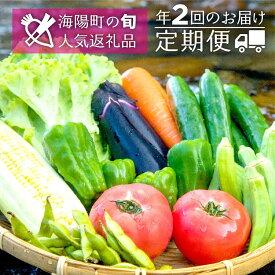 【ふるさと納税】SGN14【定期便年2回】阿波の国海陽町 旬のお野菜詰め合わせセット4-5名様以上向け