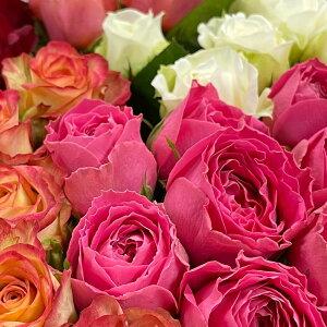 【ふるさと納税】OKM13 日本一に輝いた阿波のバラをお届け! ローズガーデン徳島 阿波バラ30本