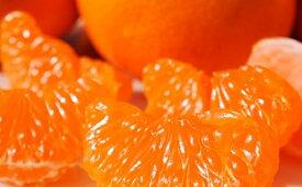 【ふるさと納税】Lサイズ特選温州みかん(石地)10kg【みかん・柑橘類・フルーツ・果物】 お届け:2019年12月中旬〜12月下旬