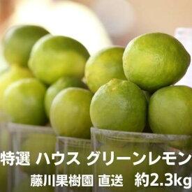 【ふるさと納税】特選ハウスグリーンレモン 約2.3kg 香川県認証エコファーマー栽培 【果物類/柑橘類/みかん・レモン 】 お届け:2021年10月上旬〜12月上旬