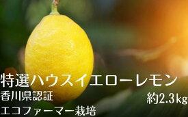 【ふるさと納税】特選ハウスイエローレモン※エコファーマー栽培 【柑橘類・レモン】 お届け:2020年1月〜3月中旬