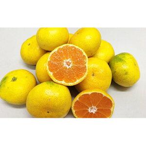 【ふるさと納税】極早生みかん 4kg 【果物・ミカン・柑橘類・蜜柑・フルーツ】 お届け:2019年9月下旬〜11月上旬