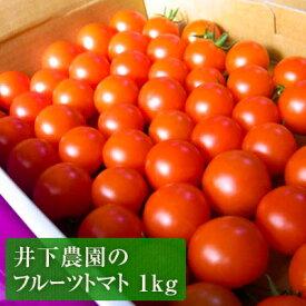 【ふるさと納税】井下農園のフルーツトマト 1kg 【野菜類/トマト】 お届け:2019年11月中旬〜2020年6月下旬