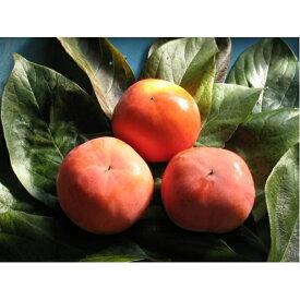 【ふるさと納税】富有柿 3.5kg 【果物類・フルーツ/柿 】 お届け:2019年11月中旬〜12月上旬
