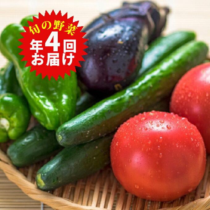 【ふるさと納税】旬の野菜詰合せ(年間4回定期便) 【野菜類・セット・詰合せ・頒布会】