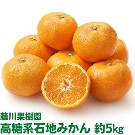 【ふるさと納税】温州みかん(石地)5kg 【果物類/みかん・柑橘類・フルーツ 】 お届け:2020年12月上旬〜12月下旬