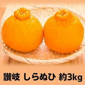 【ふるさと納税】味自慢!讃岐 しらぬひ 約3kg 【果物類・みかん・柑橘類・デコポン 】 お届け:2022年2月上旬〜3月中旬