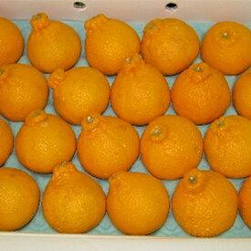 【ふるさと納税】不知火(しらぬひ)約5kg 【果物類・みかん・柑橘類・デコポン・果物類・フルーツ】 お届け:2021年2月下旬〜2021年3月下旬