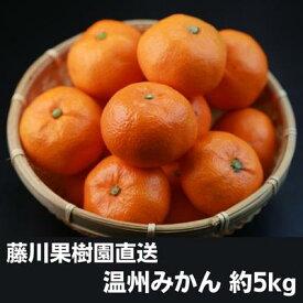 【ふるさと納税】フジカワ温州みかん 5kg 【フルーツ・果物類・みかん・柑橘類】 お届け:2020年10月上旬〜2020年12月上旬