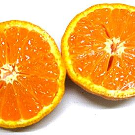 【ふるさと納税】なつみ(カラマンダリン)約5kg 【果物類・柑橘類・みかん・フルーツ】 お届け:2020年4月下旬〜2020年5月中旬