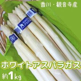 【ふるさと納税】ホワイトアスパラガス 約1kg 【アスパラガス・野菜】 お届け:2021年6月上旬〜9月下旬