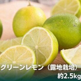 【ふるさと納税】グリーンレモン(露地栽培)約2.5kg 【果物類・柑橘類・柑橘・レモン・檸檬・グリーンレモン】 お届け:2020年11月1日〜12月15日