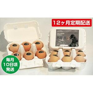 【ふるさと納税】【12ヶ月定期配送】烏骨鶏卵 毎月10日頃発送 【定期便・卵】