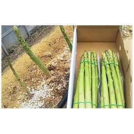 【ふるさと納税】はなまる農園のアスパラ 1kg(さぬきのめざめ) 【野菜・旬野菜】 お届け:2019年5月中旬〜10月中旬
