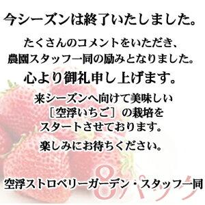 【ふるさと納税】空浮いちご 8パック※クレジット限定 【いちご・苺・イチゴ・果物類・フルーツ】 お届け:2020年1月中旬〜2020年5月下旬