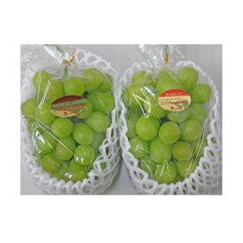 【ふるさと納税】シャインマスカット 2房(1.1kg以上) 【果物類・ぶどう・マスカット・フルーツ・果物・ぶどう・フルーツ・果物類・フルーツ】 お届け:2020年8月下旬〜9月下旬