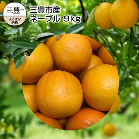 【ふるさと納税】三豊市産 ネーブル 9kg(36〜60玉)