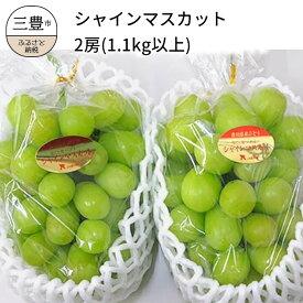 【ふるさと納税】シャインマスカット 2房(約1.1kg以上)