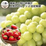 【ふるさと納税】三豊市産【人気のフルーツ2品】定期便