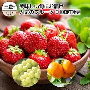【ふるさと納税】三豊市産【人気のフルーツ3品】定期便