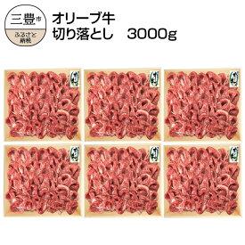 【ふるさと納税】オリーブ牛 切り落とし3000g