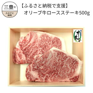 【ふるさと納税】【ふるさと納税で支援】オリーブ牛ロースステーキ500g