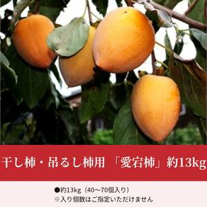 【ふるさと納税】干し柿・吊るし柿用「愛宕柿」約13kg