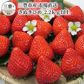 【ふるさと納税】三豊市産【市場直送 さぬきひめ 2.2kg以上】