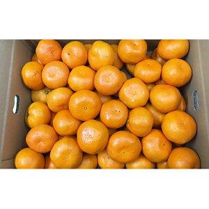 【ふるさと納税】小豆島みかん 10kg 【果物類・柑橘類・みかん・フルーツ】 お届け:2019年11月下旬〜2019年12月中旬