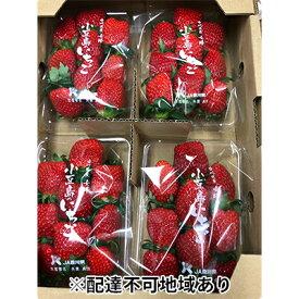 【ふるさと納税】【2021年2月からの発送】小豆島のいちご(女峰)1kg (250g×4パック入り) 【果物類・いちご・苺・イチゴ・女峰】 お届け:2021年2月上旬〜2021年5月下旬