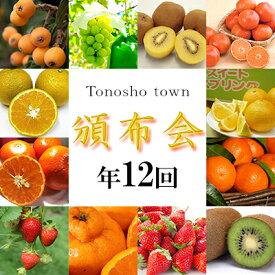 【ふるさと納税】土庄町 ふるさと果実 12回定期便 【定期便・果物類・フルーツ】