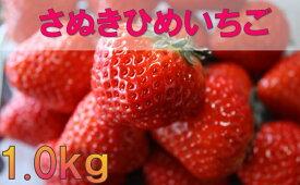 【ふるさと納税】1080 三木町地域いちご部会「さぬきひめ」1.0kg
