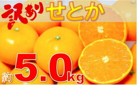 【ふるさと納税】786 訳ありせとか 約5.0kg