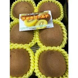 【ふるさと納税】さぬきゴールドキウイ 約1kg_キウイフルーツ 【果物詰合せ・フルーツ・くだもの】 お届け:2020年10月中旬〜12月上旬