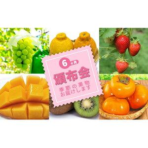 【ふるさと納税】特産 フルーツ 定期便(年6回) 【定期便・果物類・ぶどう・マスカット・フルーツ・果物・マンゴー・果物詰合せ】 お届け:2020年11月〜
