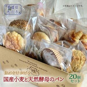【ふるさと納税】国産小麦と天然酵母のパンセット F21Q-874