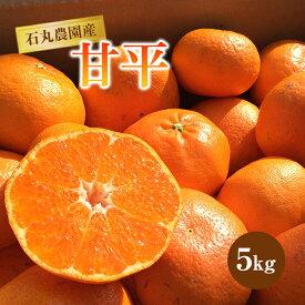 【ふるさと納税】石丸農園産甘平5kg F21Q-889