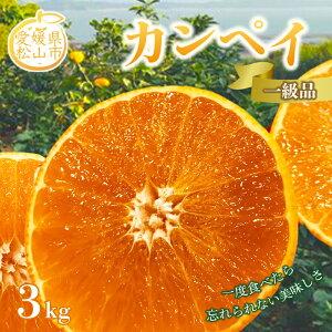 【ふるさと納税】カンペイ 1級品 3kg F21Q-975