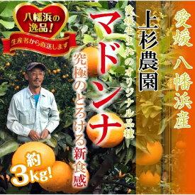 【ふるさと納税】上杉農園のぷるぷる新食感!「マドンナ」3kg【C39-16】【1251804】