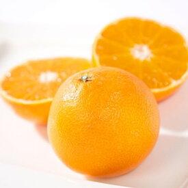 【ふるさと納税】ミヤモトオレンジガーデンの「まごころまどんな(愛媛果試28号)」3kg【1044413】