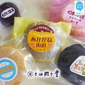 【ふるさと納税】菓舗蛭子堂自慢の焼菓子20個詰合せ