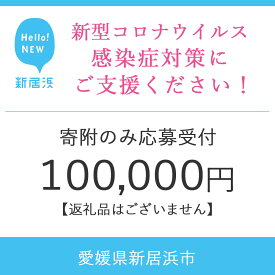 【ふるさと納税】新型コロナウイルスの感染症対策支援 100,000円【寄附のみの受付(返礼品なし)】