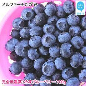 【先行予約】完全無農薬栽培 完熟ブルーベリー700g(冷凍)毎年人気の冷凍ブルーベリーです♪【ふるさと納税】