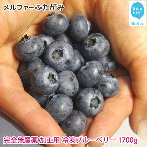 完全無農薬栽培 加工用完熟ブルーベリー1700g(冷凍) 保存に嬉しい冷凍でお届けします【ふるさと納税】